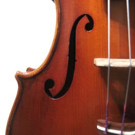 Strings music instruments