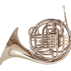 French Horn Holton-Farkas H179 / Professional